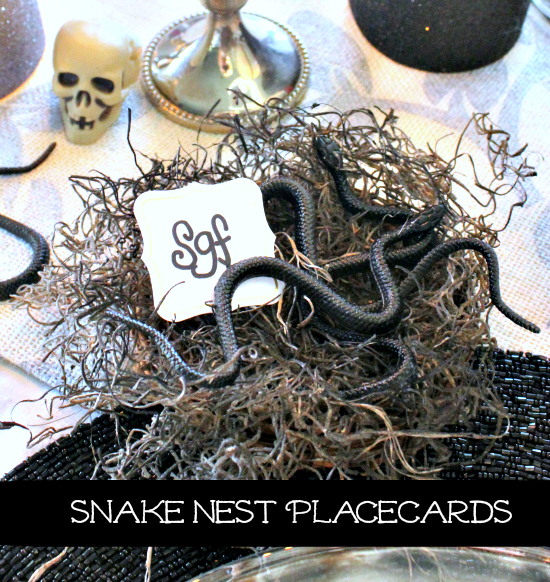 Snake Nest placecards