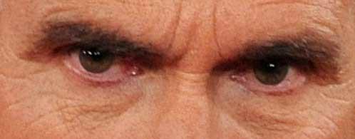 Mitt's-Eyes