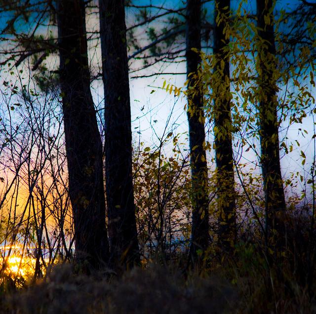 Près du lac au soleil couchant... reflet du ciel... couleurs d'automne...!!!