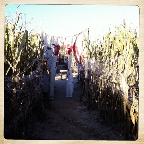 Mid-South Corn Maze, Memphis, Tenn.