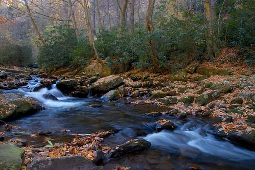 longexposure autumn fall creek virginia nationalforest jeffersonnationalforest gilescounty gilesco littlestonycreek