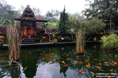Tirtha Empul Temple Fish Pond