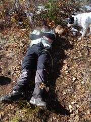 Summit nap