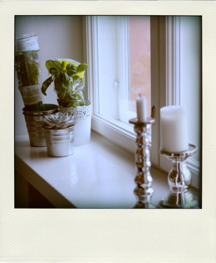 ikkunalaudallani-pola