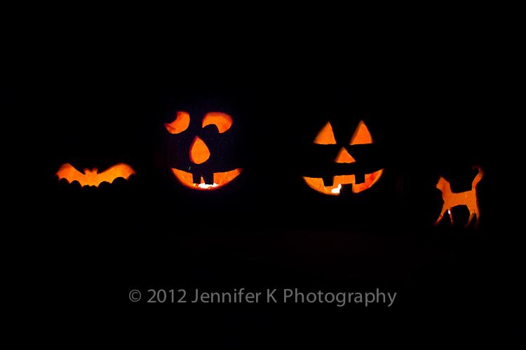 Pumpkins12-online-6770.jpg