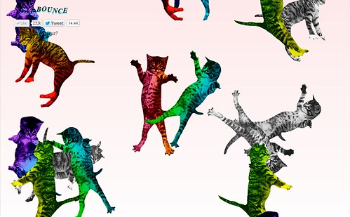 cat-bounce-rainbow
