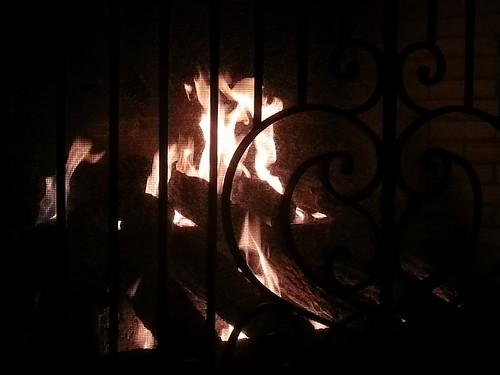 Warm and Cozy by Lisa's Random Photos