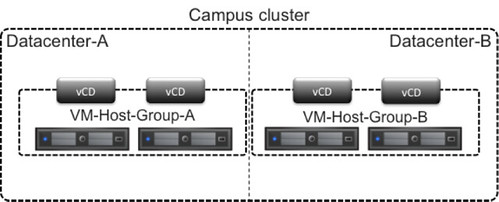 VM-Host affinity groups