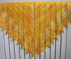 Cupani's Birthday Shawl