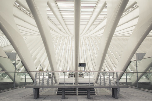 The Antichamber (Gare de Liège-Guillemins, Belgique) - Photo : Gilderic