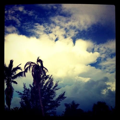 uploaded:by=flickstagram instagram:photo=105506711640168