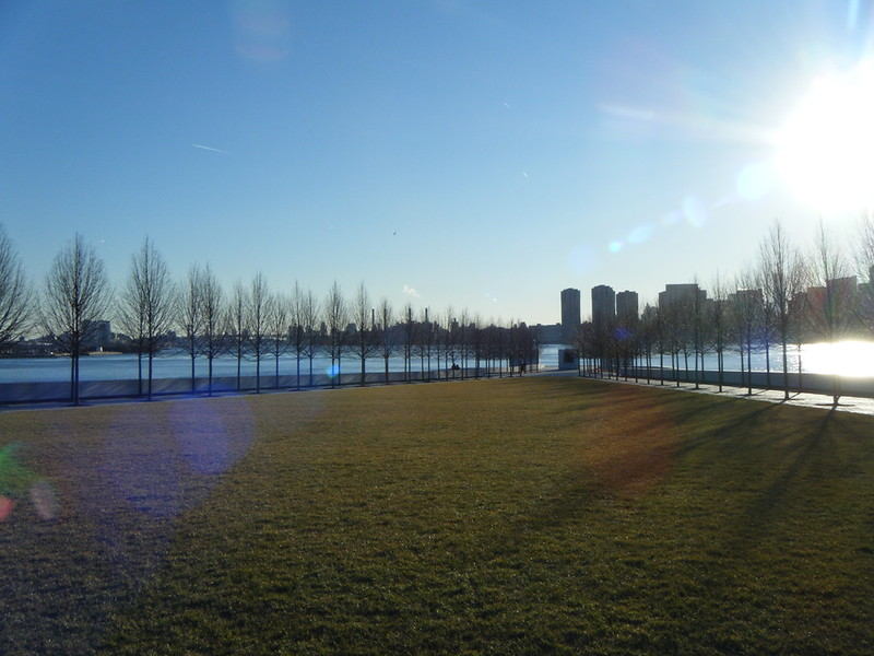 Lawn in Four Freedoms Park