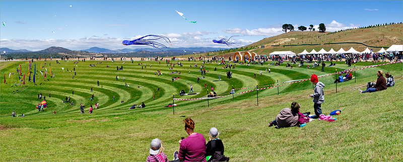Kites in the bowl, Canberra Arboretum
