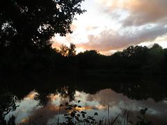 La nuit vient, étang deLa Maladrie, St Evroult-Notre Dame des Bois, pays d'Ouche, Orne, Normandie, France.