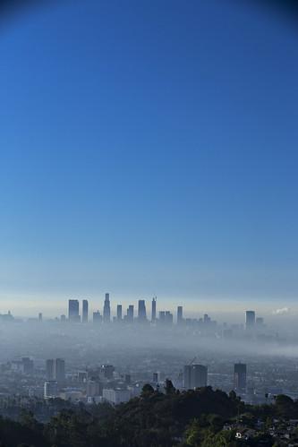 DTLA Skyline