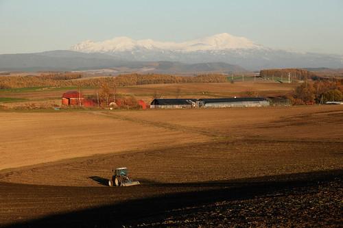 大雪山とトラクター風景