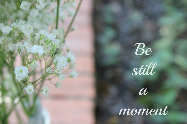 Be Still a moment