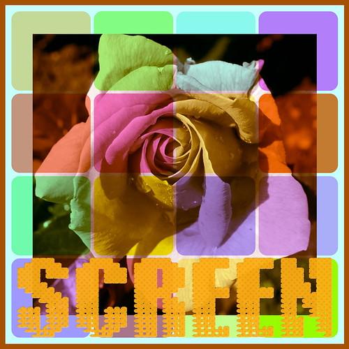 Multicolor Screen by TanyDi