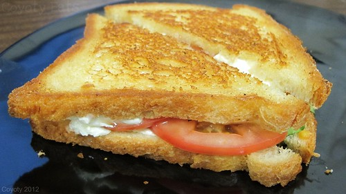 Mozzarella and basil panini with tomato and balsamic vinaigrette by Coyoty