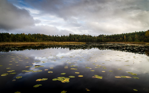 autumn emsalö pentaxk5 bjurmossaträsket