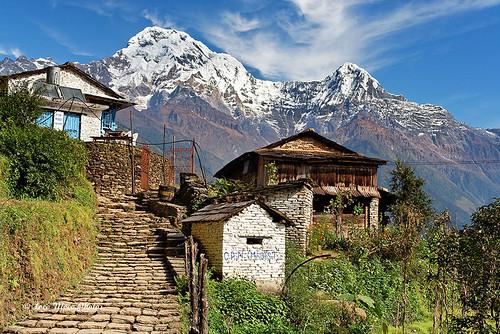 nepal trekking annapurna himalayas rebels fishtail maoists cpn ghandruk hiunchuli machapuchare
