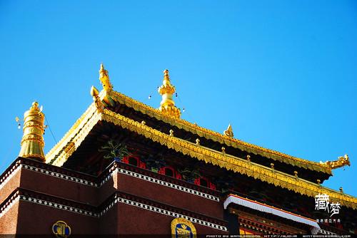 8102223291 0751130e4b 藏梦●追寻诺亚方舟之旅:神秘藏传佛教   王佳冬个人博客