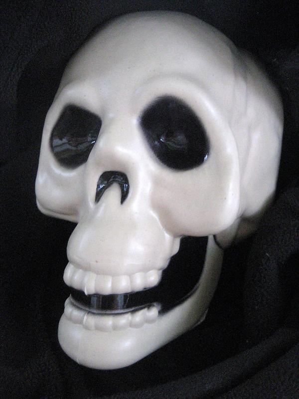 skull before