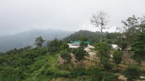 Koh Samui Mountain サムイ島の山にて (23)