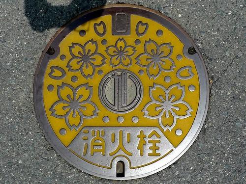 Asahi town Okayama pref manhole cover (岡山県旭町のマンホール)