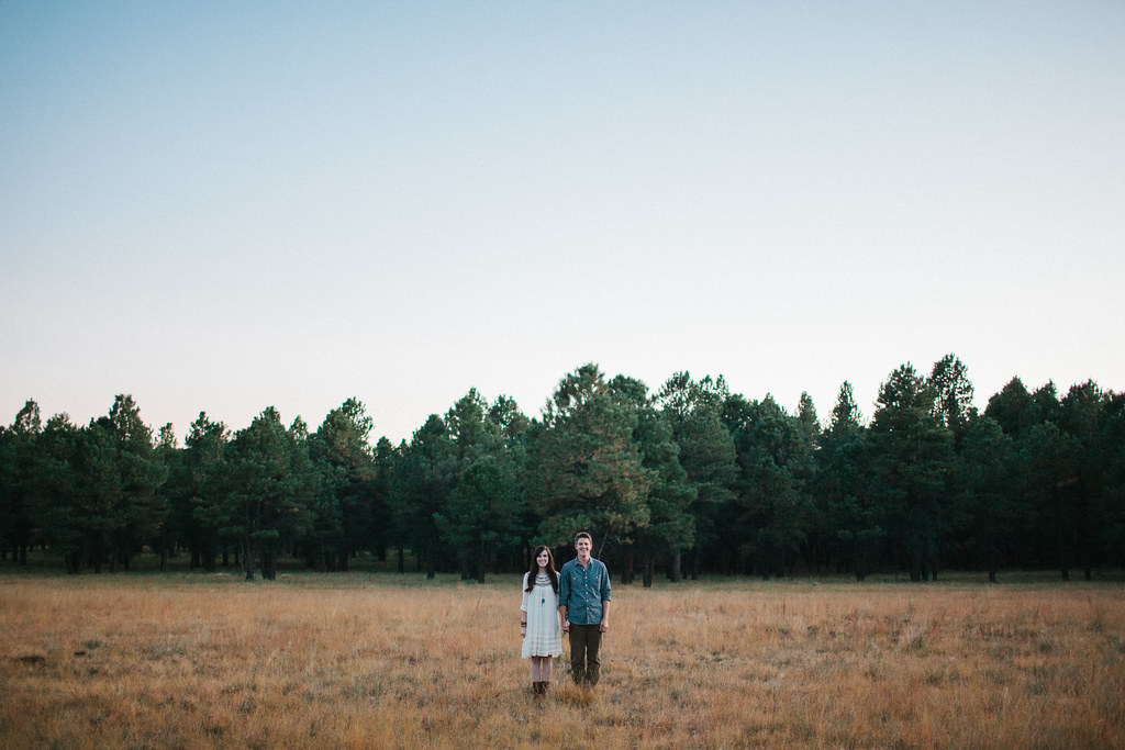 NickClaireEngagements2012-72