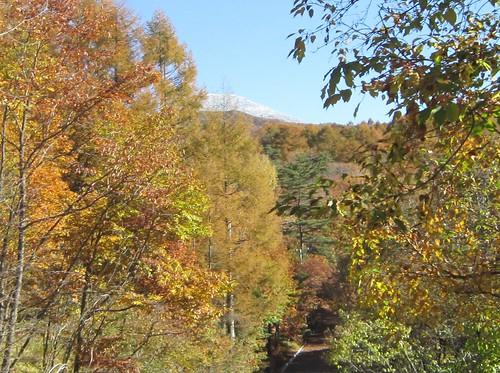 初冠雪した縞枯山 2012年10月24日9:14 by Poran111