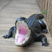 Small photo of Fake American Alligator (Alligator mississippiensis)