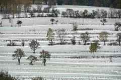 Nadja ja lumi 28.10.2012