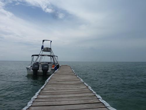 Colombia | Islas del Rosario | Lancha Bravo Tax 36