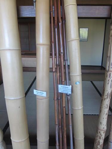 Hakone Japanese Gardens, Saratoga, CA, bamboo IMG_2388