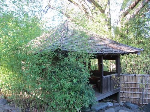 Hakone Japanese Gardens, Saratoga, CA IMG_2358