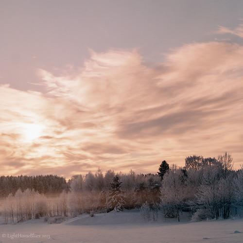 winter snow 6x6 film analog mediumformat square 120film hasselblad scanned rime ie kvadrat scannad c41 kodakportra400 rimfrost hasselbladswc lunaphoto snowmist mellanformat coldmist lunagallery magicunicornverybest lighthouseblues