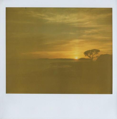 sunset sunrise polaroid everglades polaroidspectra