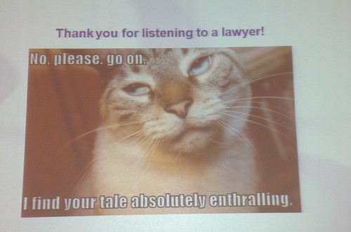 Powerpoint slide with lolcat