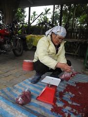 部落的伊瑪正在秤紅豆。
