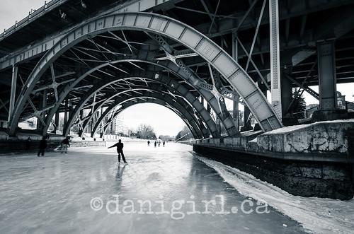 Skaters on the Rideau Canal 2