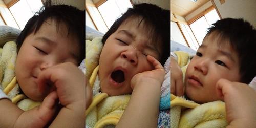 起きたよ!おはよう! 2013/1/27