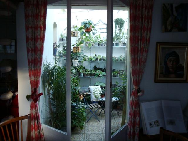 Dans mon Jardin d'Hiver 8430490824_d7e85ae3ee_z