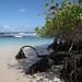 Galapagos_10314