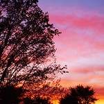 Wed, 04/27/2011 - 10:12pm - Stacey Kavanagh - sunset 4-30 a