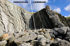 The Cambrian/Ordovician Global Stratotype Section and Point