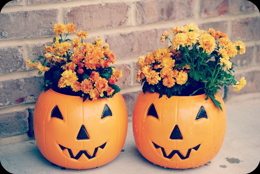 pumpkinmums