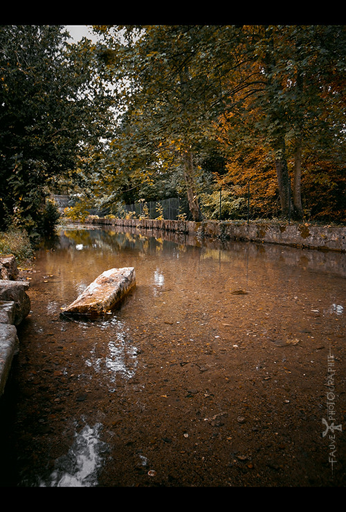 [PHOTO] Contemplration d'Automne