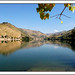 Douro Reflection