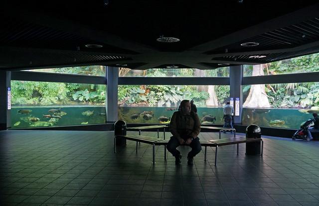 2012 10 10 10 13 berlin 011 zoologischer garten zoo aquarium flickr photo sharing. Black Bedroom Furniture Sets. Home Design Ideas